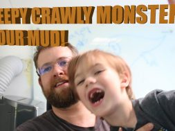 Creapy Crawly Critters in Gutter mud